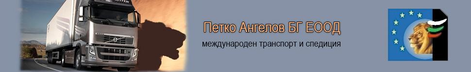 Petko Angelov
